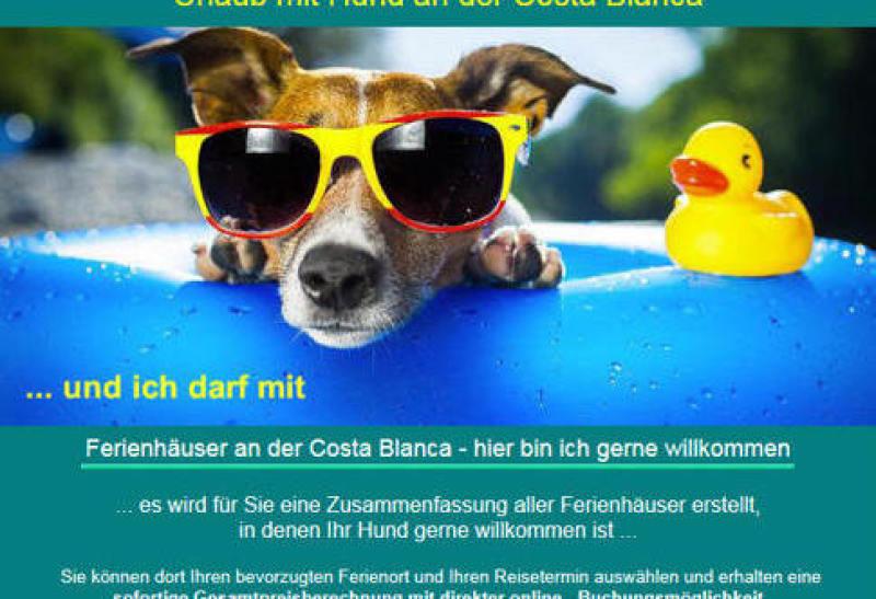 Carlosferien Denia Urlaub mit Hund